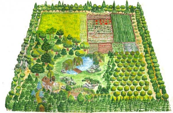 Как сажать деревья в родовом поместье 38